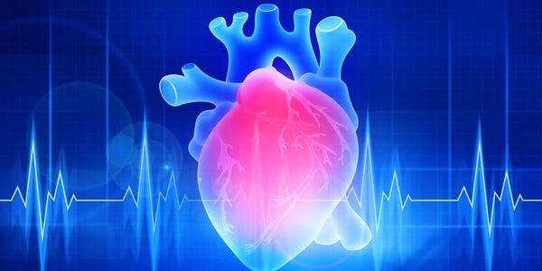 Principes van intra-aortale ballonpomp voor recoveryverpleegkundigen