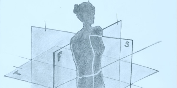 Anatomische assen, vlakken en bewegingen